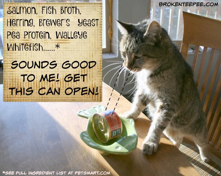 best pet food, natural pet food, Natural Balance, Wild Pursuit, ingredients, Stinky the Farm cat, PetSmart, #NaturalBalance, #sponsored