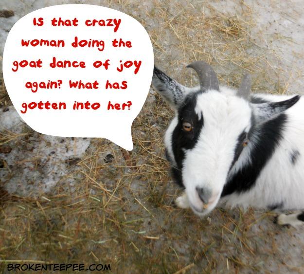 Osteo Bi-Flex EASE® Has Me Dancing for Joy! #MadeToMove #Ad
