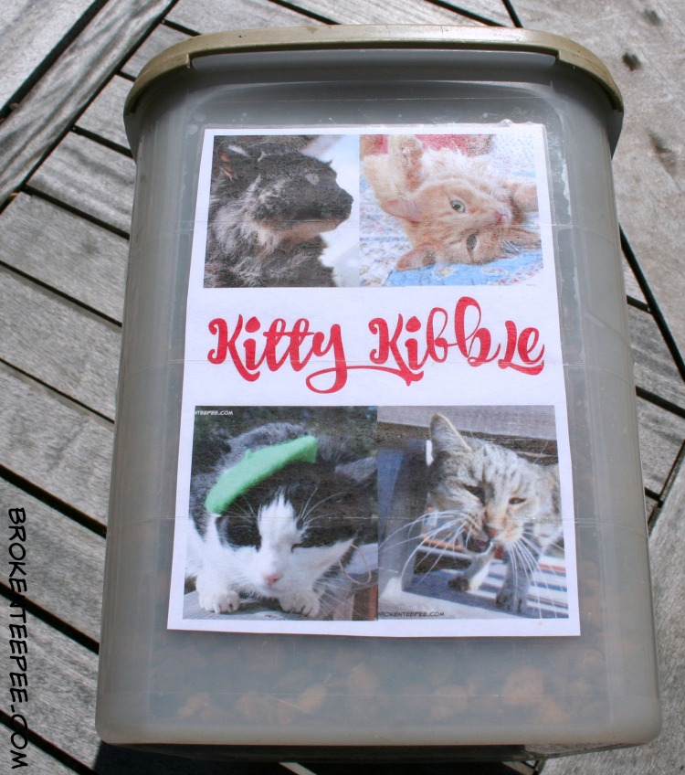 Cat's Pride Fresh & Light Ultimate Care Cat Litter, Make a Personalized Kitty Kibble Container, #UltimateLitter, #Ad