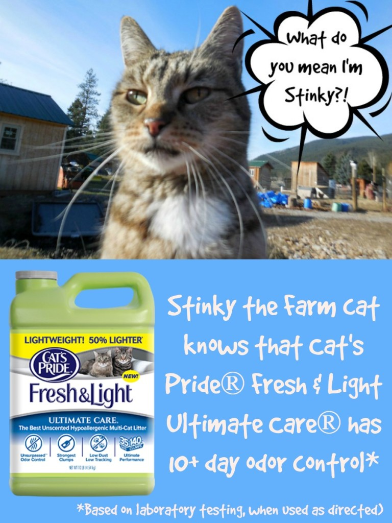 Cat's Pride Fresh & Light Ultimate Care Cat Litter, #UltimateLitter, #Ad