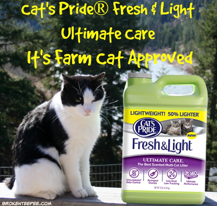 Cat's Pride Fresh & Light Ultimate Care Cat Litter, Harry the Farm cat, #UltimateLitter, #Ad