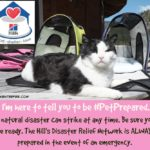 Disaster Preparedness Tips to Help you be #PetPrepared