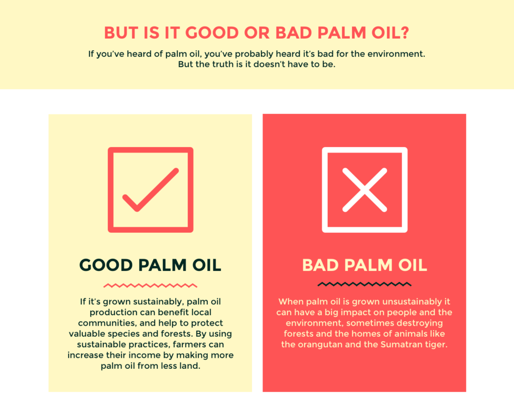 Roundtable on Sustainable Palm Oil, sustainable palm oil, palm oil, #goodbadpalmoil, #ad