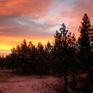 photos from Montana, sunrise, Friday's Hunt