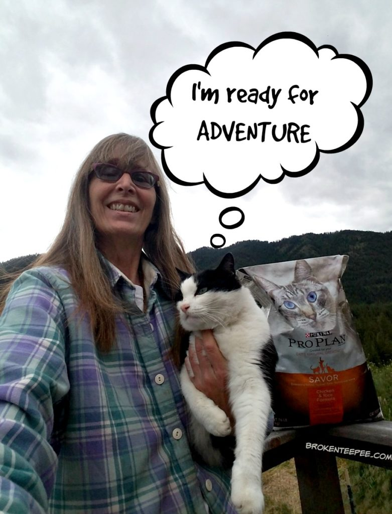 Purina Pro Plan, Take Your Cat on an Adventure Day, cat adventure, nutritious food, Harry the Farm cat, #MyGreatCat, #ad