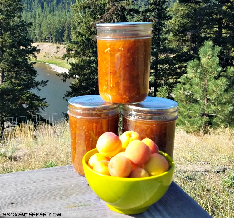Apricot Sauce Recipe – A New Favorite for When the Apricots are in Season