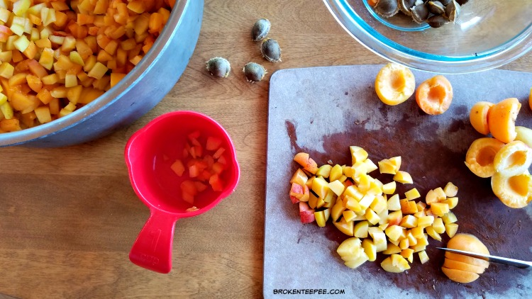 apricots, apricot sauce, apricot recipes, canning hack