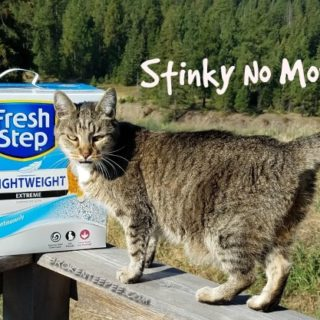 Fresh Step with the Power of Febreze, cat litter, BlogPaws, Stinky no more, get the stink out, PetSmart, #FreshStepFebreze, #Unsmellable, #AD
