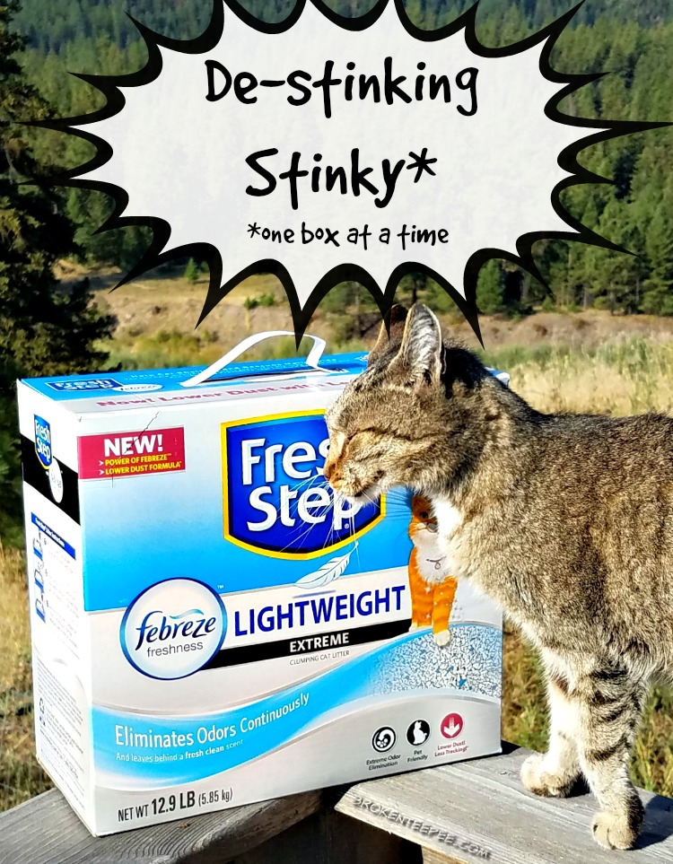 Fresh Step with the Power of Febreze, cat litter, BlogPaws, get the stink out, Stinky no more, PetSmart, #FreshStepFebreze, #Unsmellable, #AD