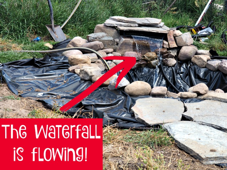 How to add a Pond, smartpond, duck pond, the Happy Ducks, the water filtration and circulation system, #ad