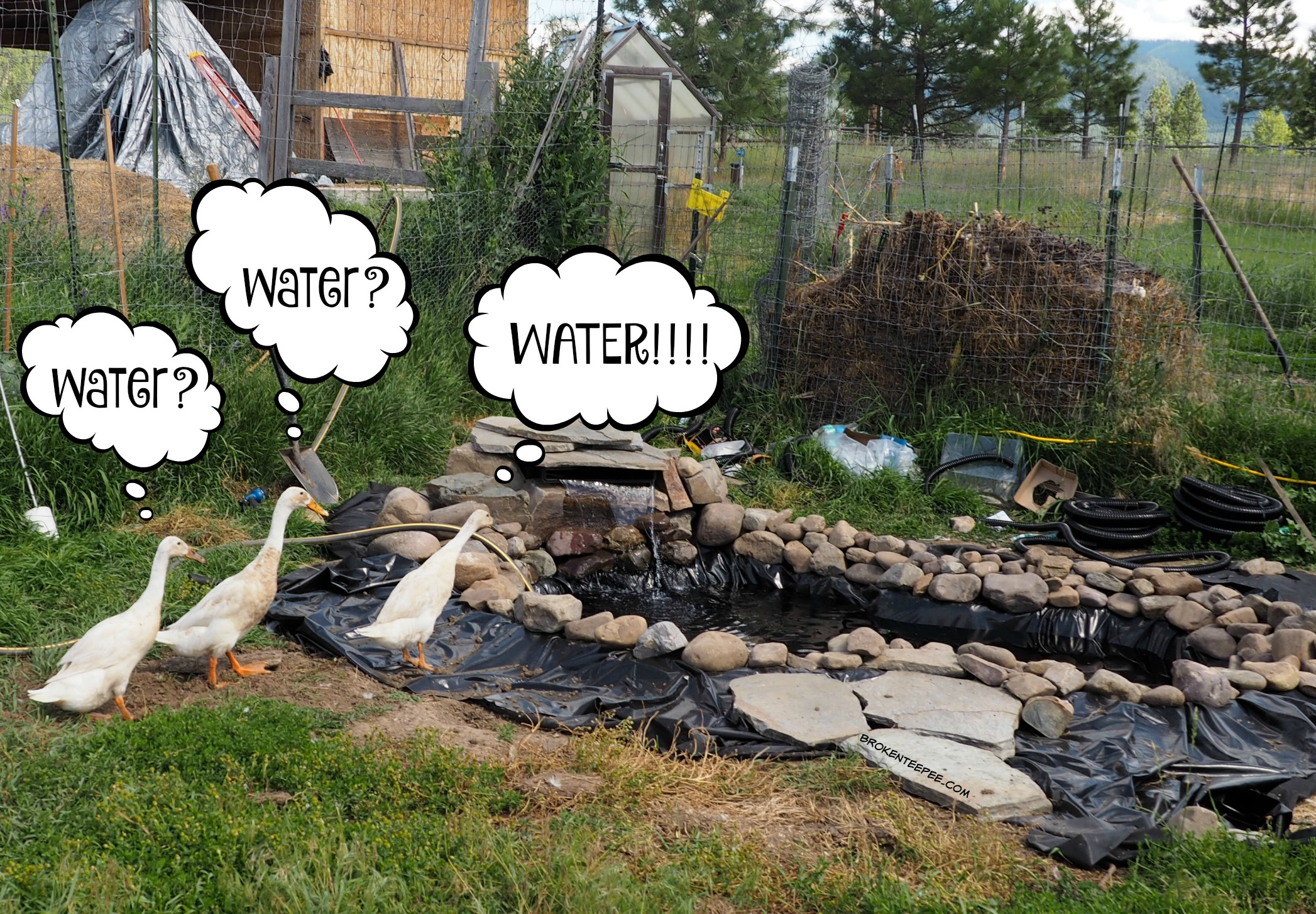 How to Add a Pond, Step 3: Add the Water Circulation and Filtration System