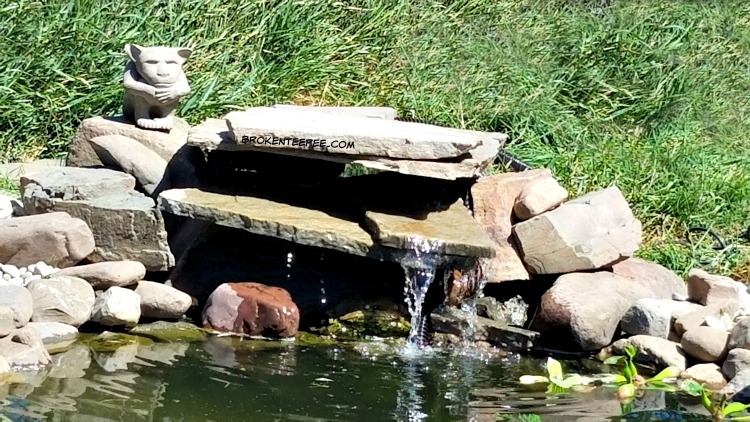 Adding a Pond, duck pond, smartpond, the Happy Ducks, #AD