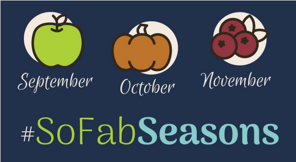 Celebrate the Season with a Bushel of Apple Recipes, Crafts and More #SoFabSeasons