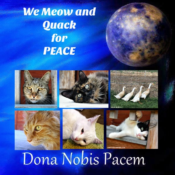 blog-for-peace-2016, Dona Nobix Pacem
