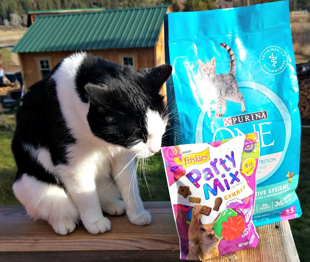 Purina savings, Target, Harry the Farm cat, #Txt4Pet, AD
