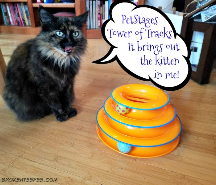 Fun Interactive Cat Toys for Your Feline Friends