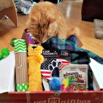 Pet Subscription Box Fun from PetGiftBox.com – Review