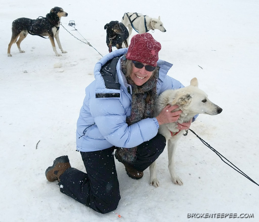 Yellowstone Winter Excursions - Dog Sled Adventures and More
