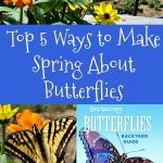 Top 5 Ways to Make Spring About Butterflies from the Bird Watcher's Digest Butterflies Backyard Guide