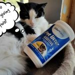 Litter Box Odor Removal Additive – it's Earth Friendly! from OdorKlenz