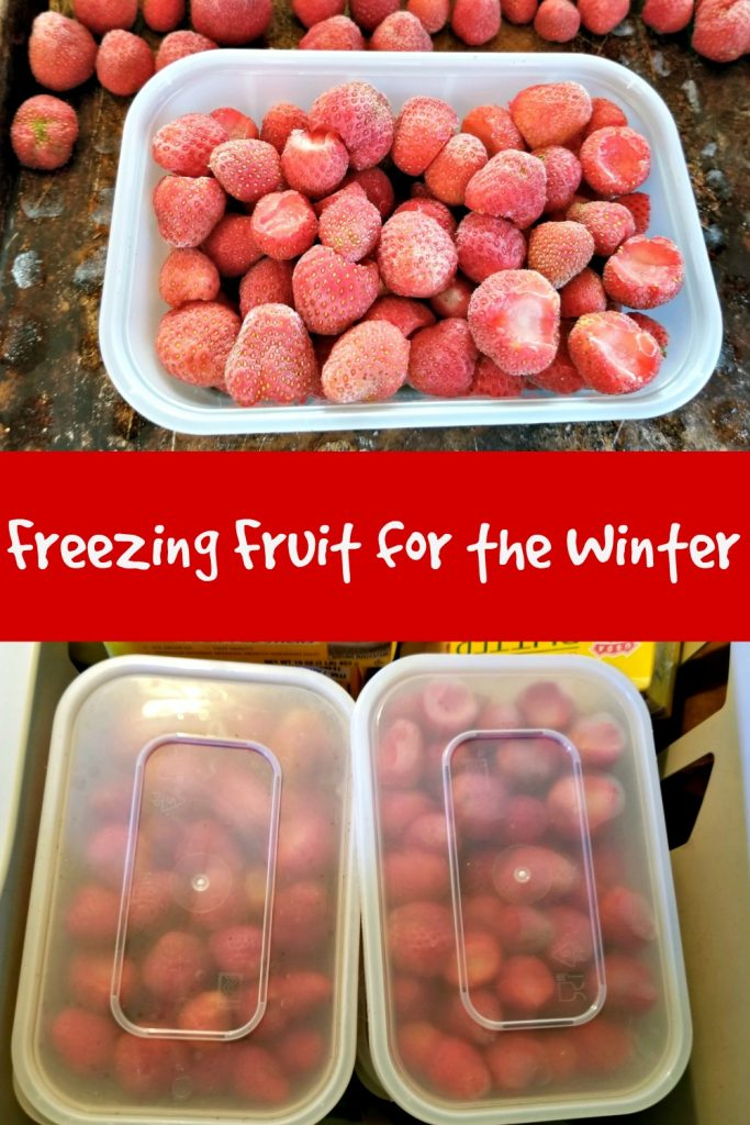 freezing fruit for the winter