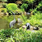 TravelPortland – The Portland Japanese Garden, a Place of Beauty and Peace