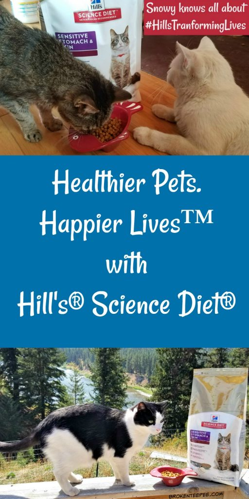 Healthier Pets Happier Lives, Hill's Science Diet, #HillsTransformingLives, #AD