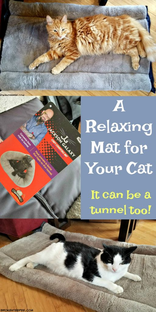 Kitty Zip Mat, Jackson Galaxy, Petmate, AD