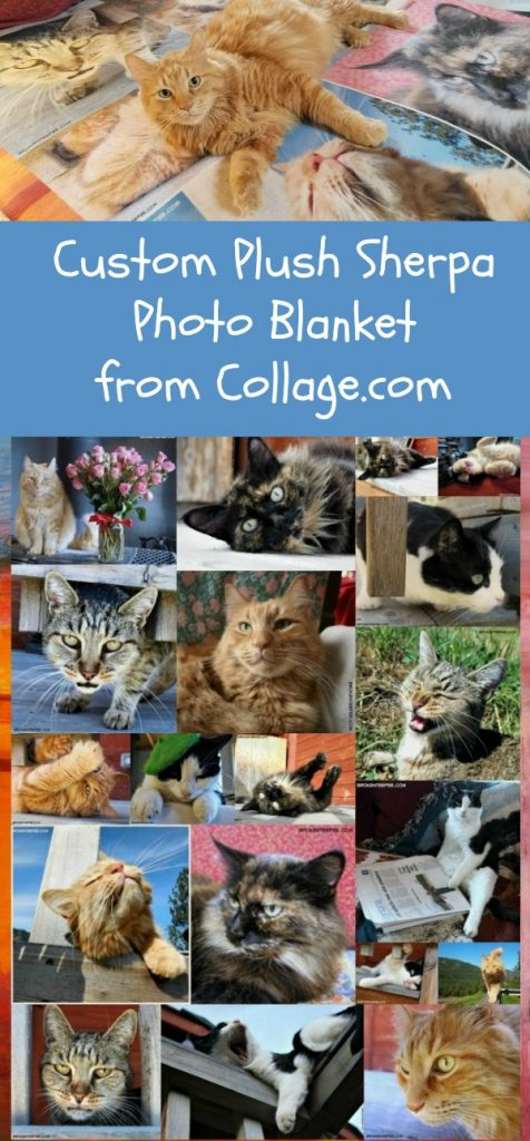 custom photo blanket, Collage.com, holiday gift idea, gift idea, AD