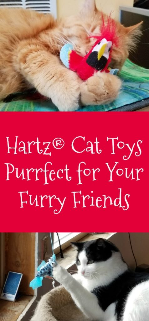 Cat Toy Gift Ideas, Hartz cat toys, Chirping Bird, Gone Fishin', Roll Around Mouse, Mini Mice, AD