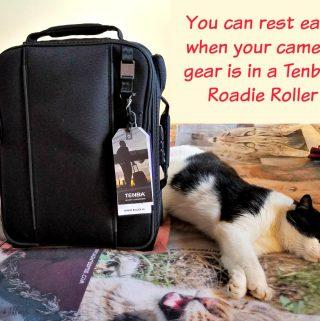 Tenba Roadie Roller, Tenba Camera Bag, camera bag, traveling with camera gear, Tenba, AD
