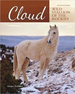 Cloud Wild Stallion of the Rockies