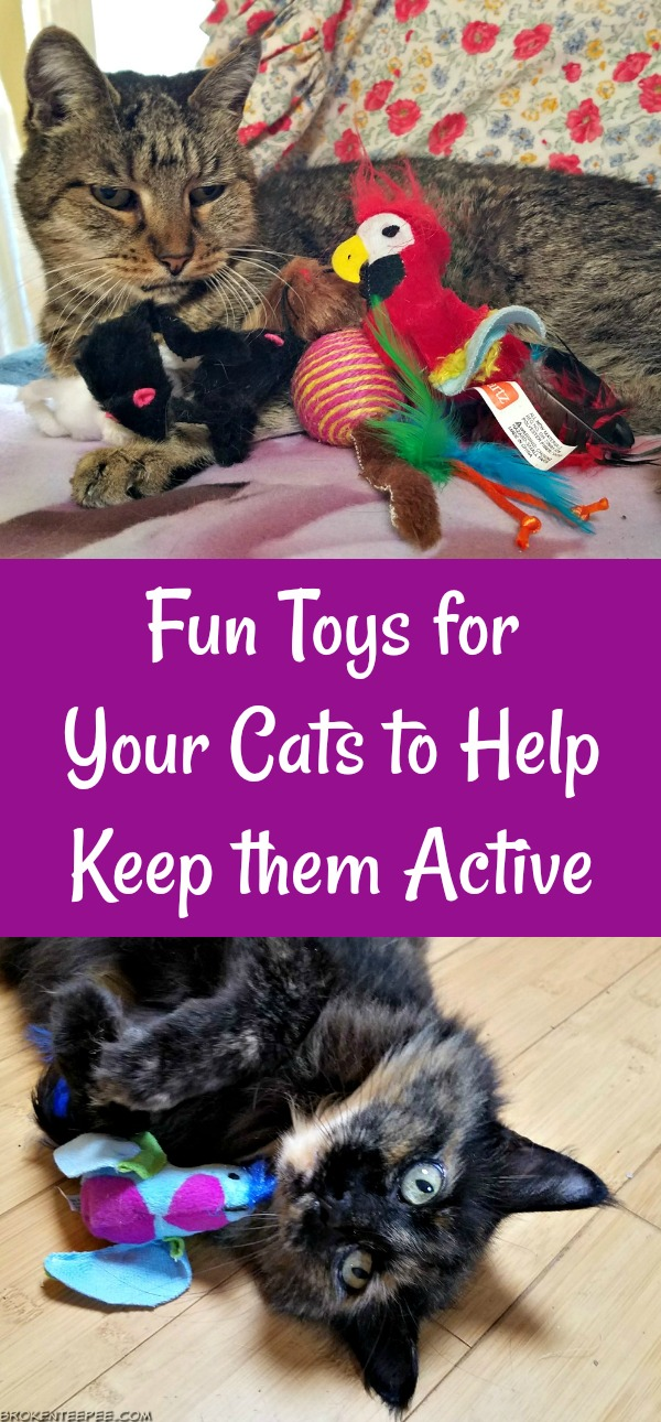 Hartz Toy Prize Package, Hartz cat toys, cat toy fun, AD