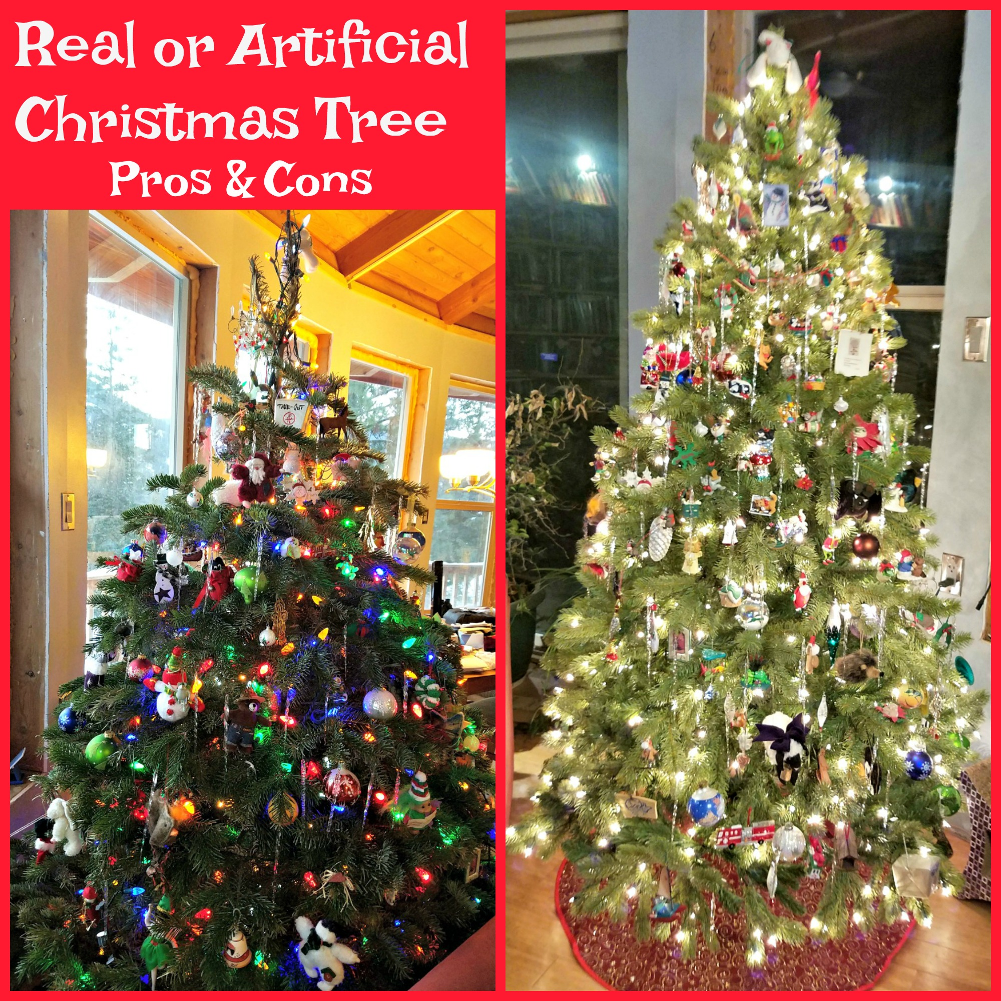 Real Christmas Tree Or Artificial