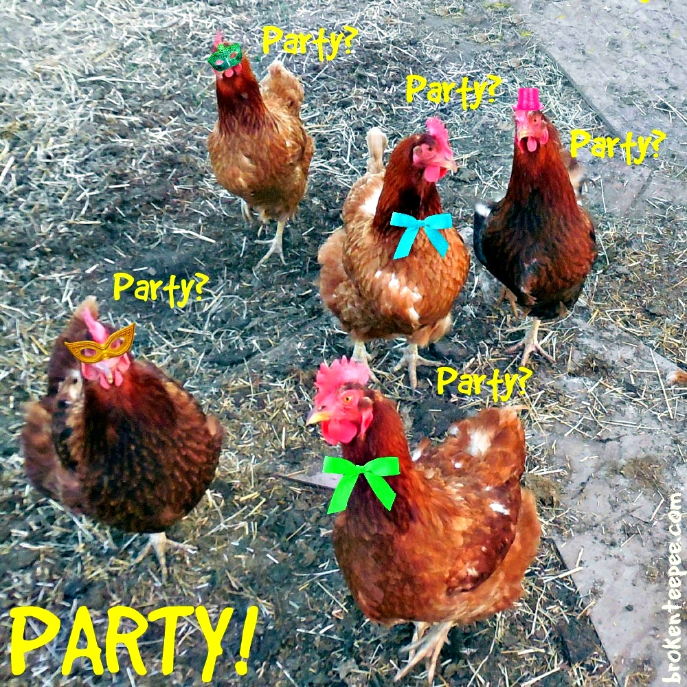 party chickens
