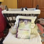 Promise by Minrose Gwin – Blog Tour and Book Review