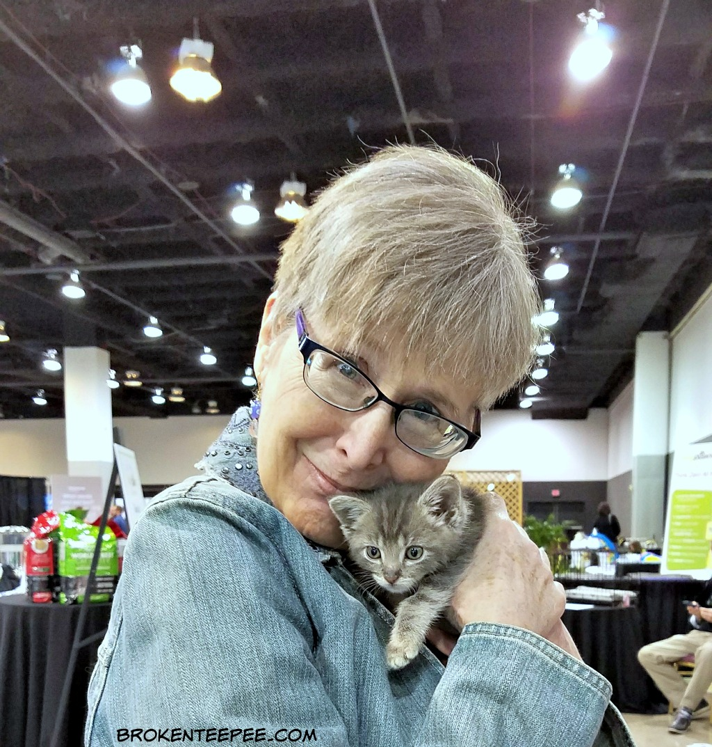 BlogPaws Pet Influencer Conference, BlogPaws, 10th Anniversary, Chewy.com, #BlogPaws, AD