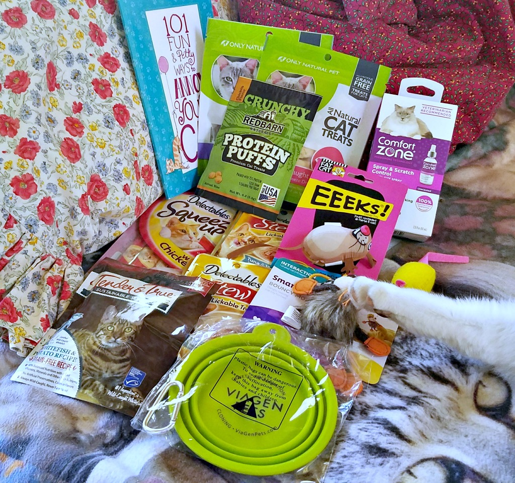 BlogPaws Swag Bag, 10th Anniversary BlogPaws Pet Influencer Conference, Chewy.com, giveaway, #BlogPaws, AD