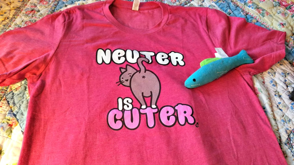 reasons to spay or neuter your pet, neuter is cuter, the Farm cats