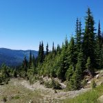 Beautiful Drives in Montana – Trout Creek Road, Superior
