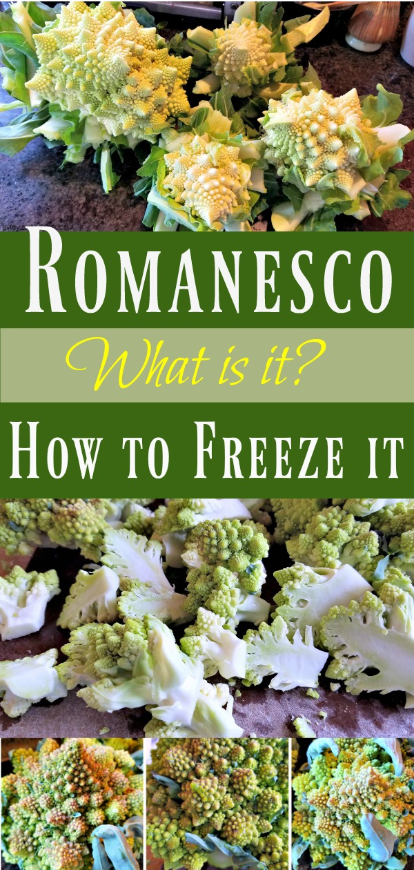 What is romanesco? A cruciferous vegetable that tastes like a cross between broccoli and cauliflower