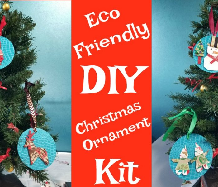 Eco Friendly DIY Christmas Ornaments and the Super Stocking Stuffer Giveaway Hop – Win the DIY Ornaments