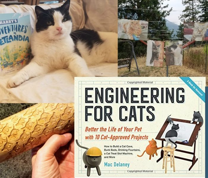 Gift Ideas for Cat Lovers – Plus the This & That Giveaway Hop! Enter to Win a Cat Prize Package (ARV $80)