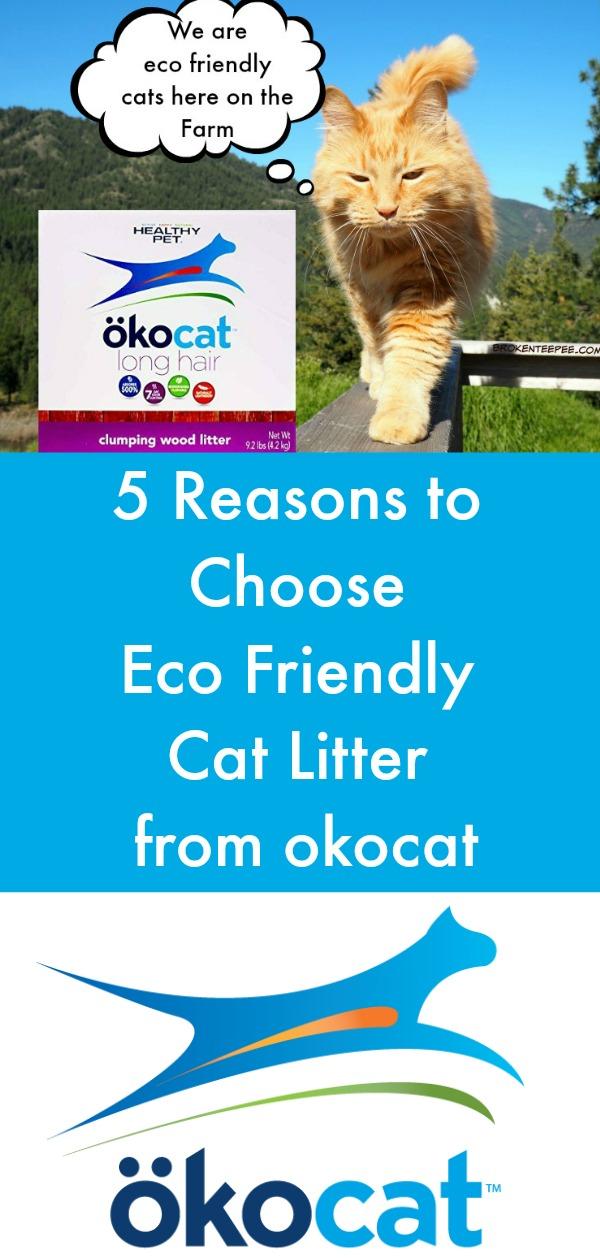 eco friendly cat litter, ocokat, AD