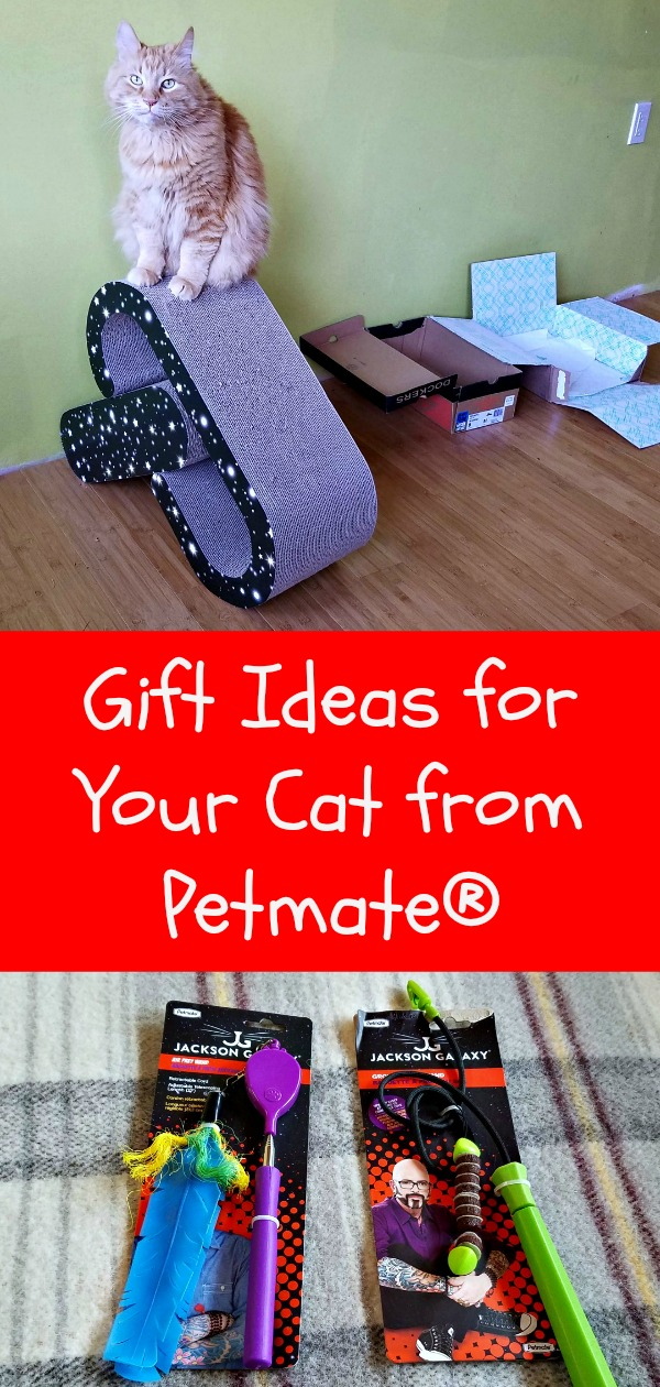 gift ideas for cats, Petmate, Jackson Galaxy, cat scratcher, wand toys, AD