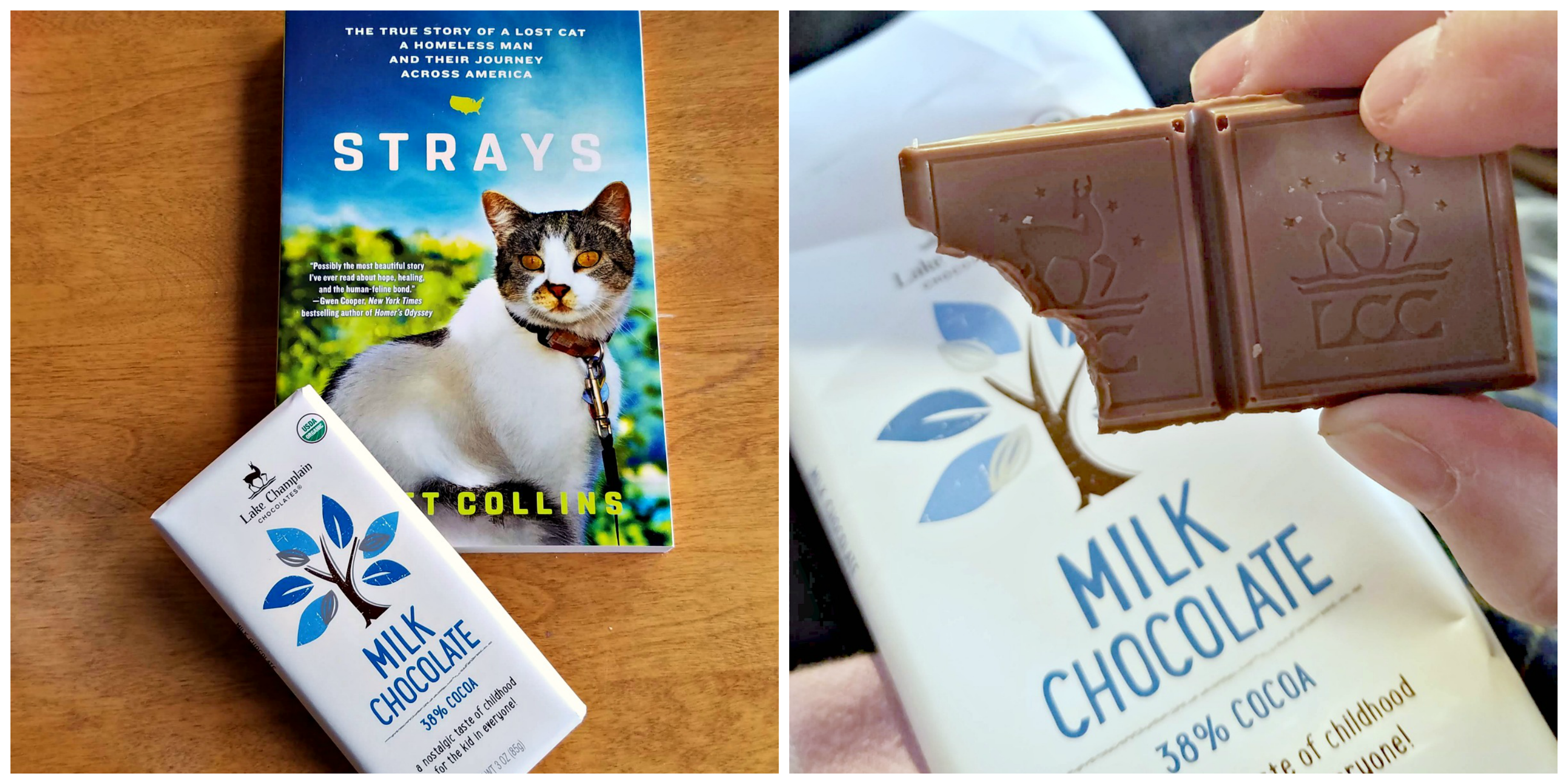 Christmas Gifts for cats, the Farm cats. Secret Cats. cat bloggers