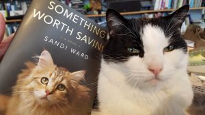 Something Worth Saving by Sandi Ward