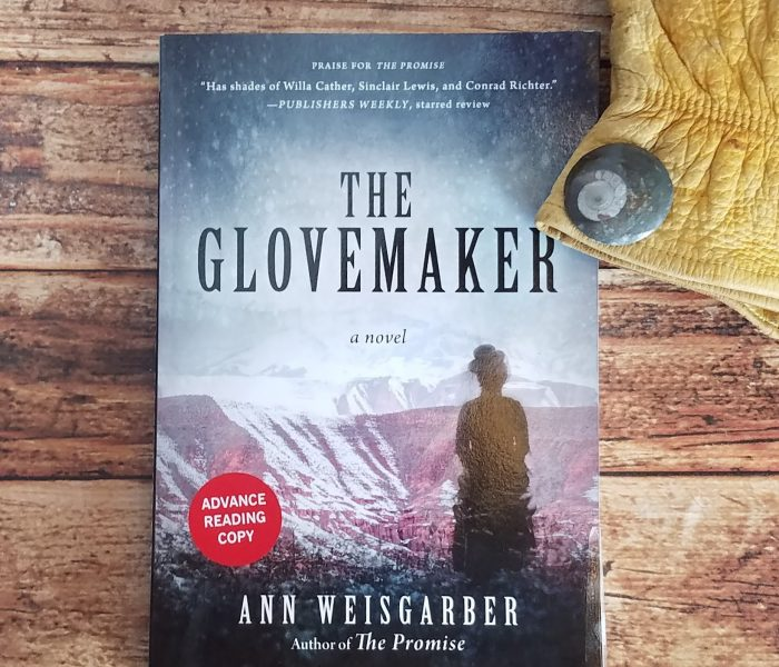 The Glovemaker by Ann Weisgarber  – Book Review