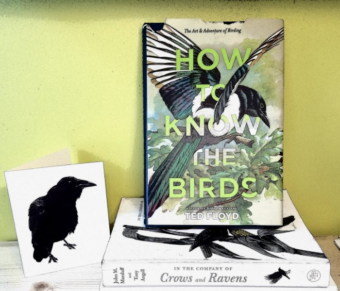 How To Know the Birds by Ted Floyd – Blog Tour and Book Review