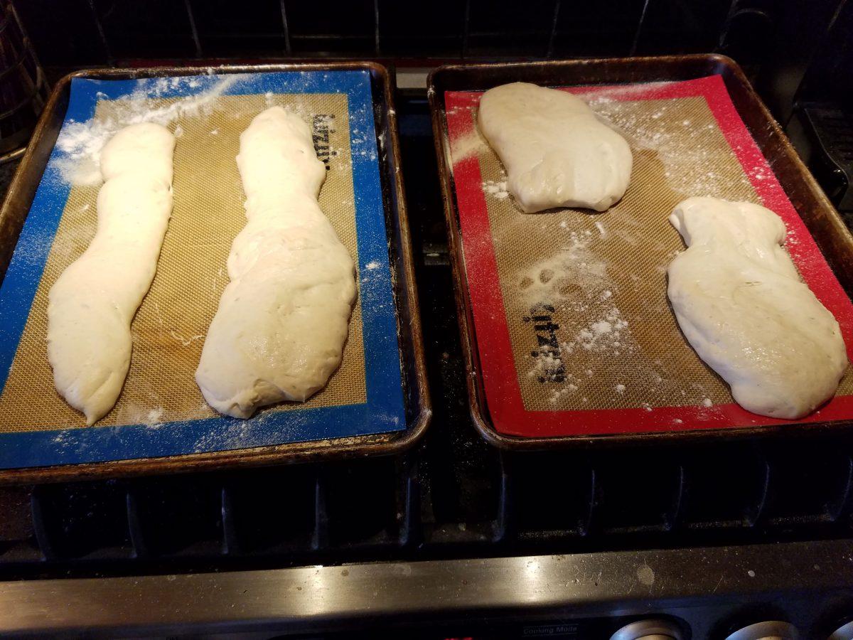 ugly looking ciabatta dough cut and rising before baking